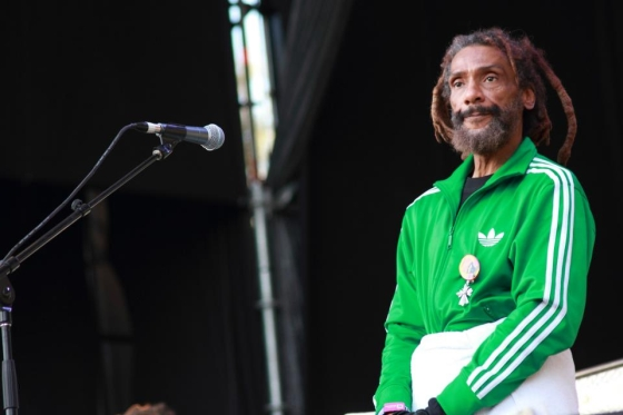 Bad Brains: Banned in Lollapalooza | POTQ Magazine