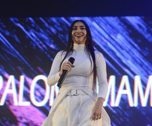Anuncian fechas para Lollapalooza Chile 2020